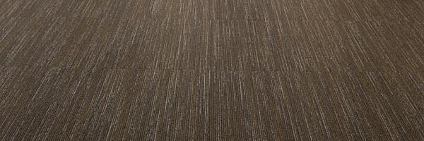 original carpet at Visualsoft